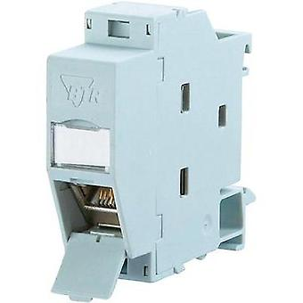 Network outlet DIN rail CAT 6A Metz Connect Light grey (RAL 7035)