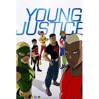 Young Justice Movie Poster (11 x 17)