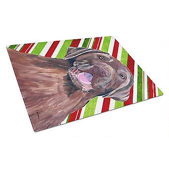 لابرادور حلوى قصب عطلة عيد الميلاد الزجاج قطع المجلس الكبير