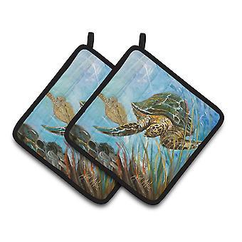 Carolines Treasures  JMK1261PTHD Loggerhead Sea Turtle Pair of Pot Holders
