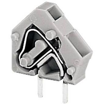 WAGO fjäderbelastade terminal 2.50 mm² antal pins 2 grå 1 dator