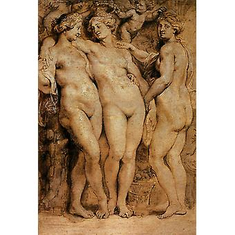 The Three Graces, Peter Paul Rubens, 40x60cm med brett