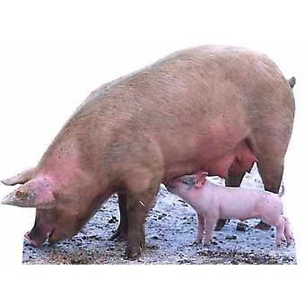 Schweine und Ferkel - Lifesize Karton Ausschnitt / f