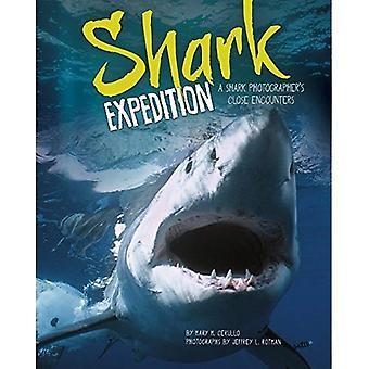 Haaienexpeditie: Een haai Photographer's Close Encounters