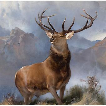 Monarch of the Glen,Sir Edwin Landseer,50x50cm