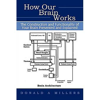 How Our Brain Works The Construction and             Functionality of Your Brain Presented and Explained by Donald Millers