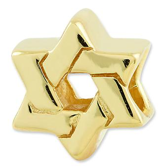 Sterling Silver Gold-plated Reflections Star Of David Bead Charm