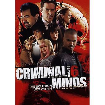 Criminal Minds - Criminal Minds: Season 6 [DVD] USA Import