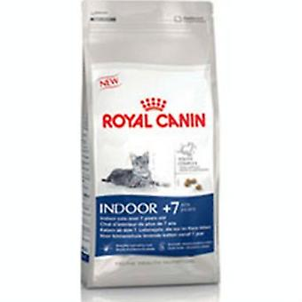 Royal Canin Indoor chat nourriture 7 Plus 1,5 kg