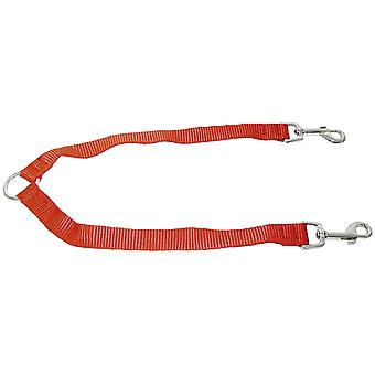Ica Nylon Double Strap (Dogs , Collars, Leads and Harnesses , Leads)