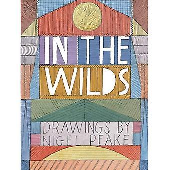 I vildmarken: teckningar av Nigel Peake