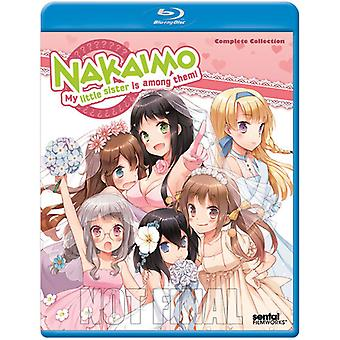 Nakaimo-My Little Sister Is Among the Them: Comple [BLU-RAY] USA import