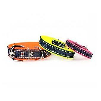 Camon Jeans Fluo Collar 25x500 mm (Dogs , Walking Accessories , Collars)