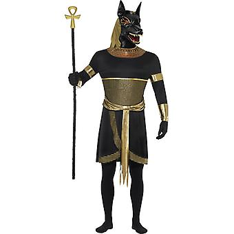 Anubis the Jackal