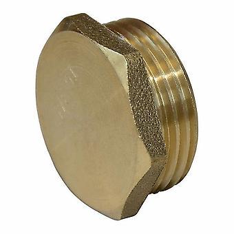 BSP Threaded Brass Pipe Screw Male Hex Blanking Plug Tube Ending Cap