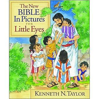 Den nya Bibeln i bilder för små ögon