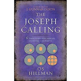 Joseph kallelse: Sex steg att förstå, navigera och uppfylla din avsikt