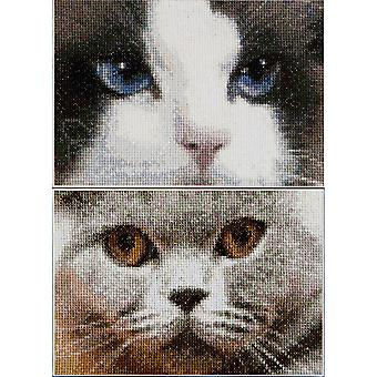 Smokey chats + bleu sur Aida compté point de croix Kit-6.75 « X4.75 » comte 16 Set de 2 TG542A