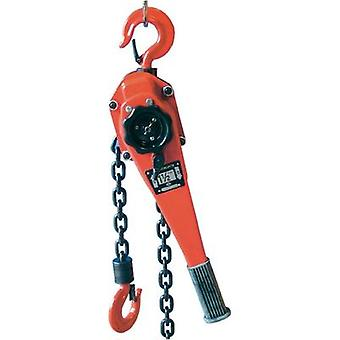 Berger & Schröter 60317 Double ratchet chain tension 1500 kg Load-bearing capacity: 1500 kg