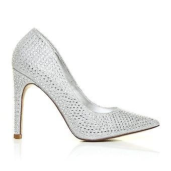Rita Silver Pointed Diamante Fashion High Heel Pumps Court Shoes