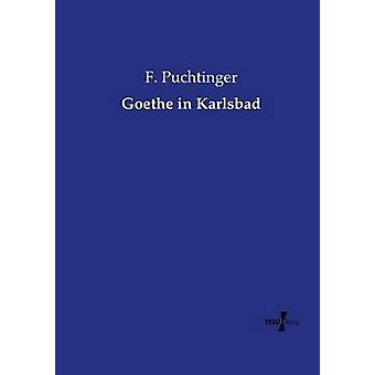 Goethe in Karlsbad by Puchtinger & F.