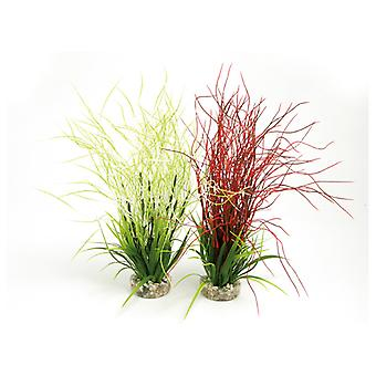 Sydeco Coloured Plants Hair Grass Maxi 33cm (Pack of 6)