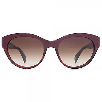 Paul Smith Aberdeen Sunglasses In Red Ruby Tortoise Polarised