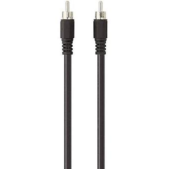 RCA Digital Digital Audio Cable [1x RCA plug (phono) - 1x RCA plug (phono)]
