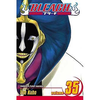 Bleichen von Tite Kubo - Tite Kubo - 9781421533124 Buch