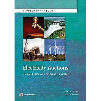 Electricity Auctions An Overview of Efficient Practices by Maurer & Luiz T. a.