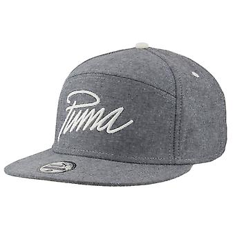 Puma Cap New 6 Panel Flatbrim