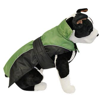 Alcott Explorer Adventure Green Jacket (Dogs , Dog Clothes , Coats and capes)