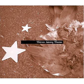 ニック グレー - イバラ間泥棒 [CD] USA 輸入