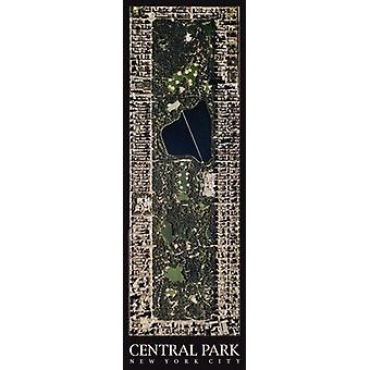 Central Park New York City Poster Print by Aric Boyles (13 x 39)
