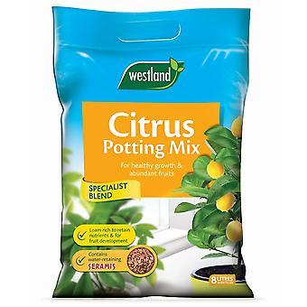 Westland citrinos do Potting Mix 8L