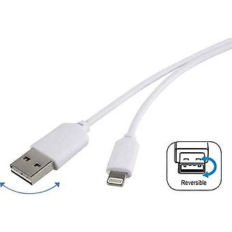 Renkforce Apple Symmetrical USB A Lightning Cable for iPod/iPad/iPhone (1m)