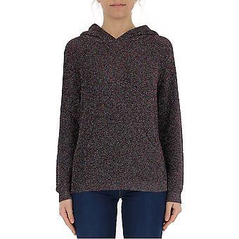 Laneus Multicolor Viscose Sweatshirt