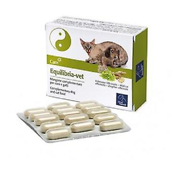 Camon Equilibria Vet 1 gr 60 Tablets (Cats , Dogs , Supplements , Supplements)