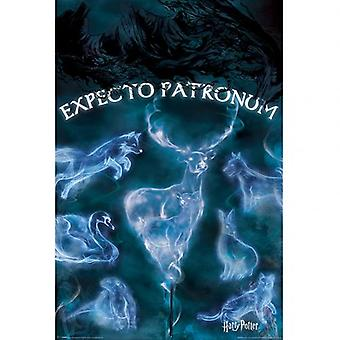 Cartel de Harry Potter Patronus 288