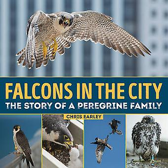 Falcons in the City - The Story of a Peregrine Family by Chris Earley