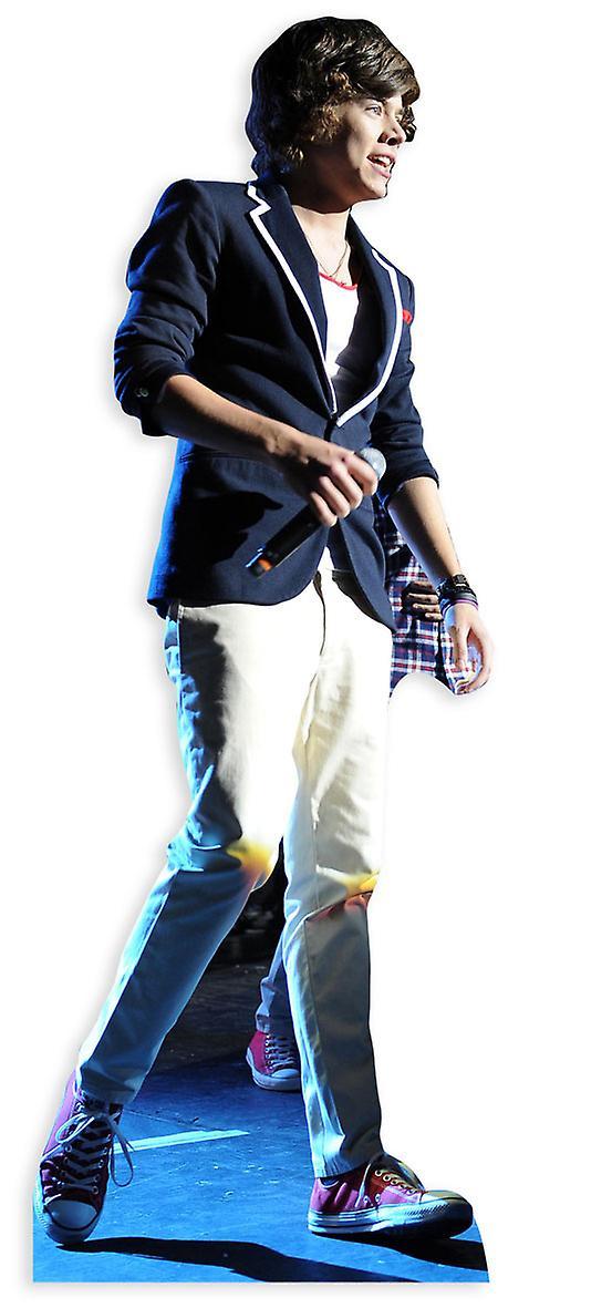 Harry Styles Lifesize Cardboard Cutout / Standee / Standup