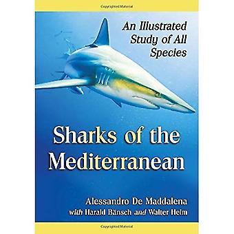 Hajer i Middelhavet: en illustreret undersøgelse af alle arter