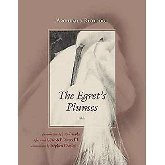 The Egret's Plumes