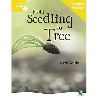 From Seedling to Tree: Yellow Level Non-fiction (Rigby Star Guided)
