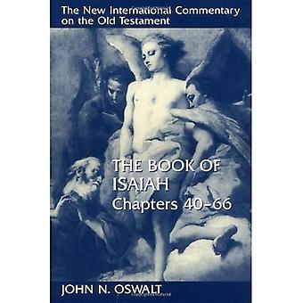 Boek van Isaiah, hoofdstukken 40-66 (New International Commentary on het Oude Testament)