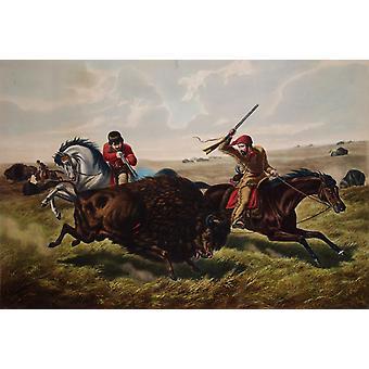 Life on the Prairie-The Buffalo,Tait Arthur Fitzwilliam,60x40cm