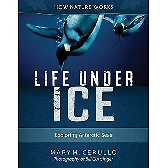 Life Under Ice 2nd Edition: Exploring Antarctic� Seas (How Nature Works)