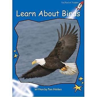 Röd raket läsare: Tidig nivå 3 facklitteratur Set C: Lär dig mer om fåglar stora bok upplagan
