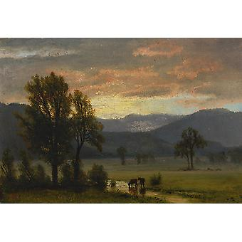 Albert Bierstadt - Landscape with cattle Poster Print Giclee