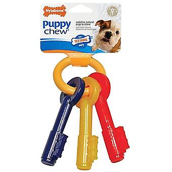 Nylabone Keys For Teething (Dogs , Toys & Sport , Chew Toys)